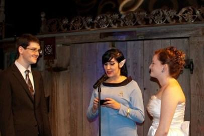 geek wedding 1